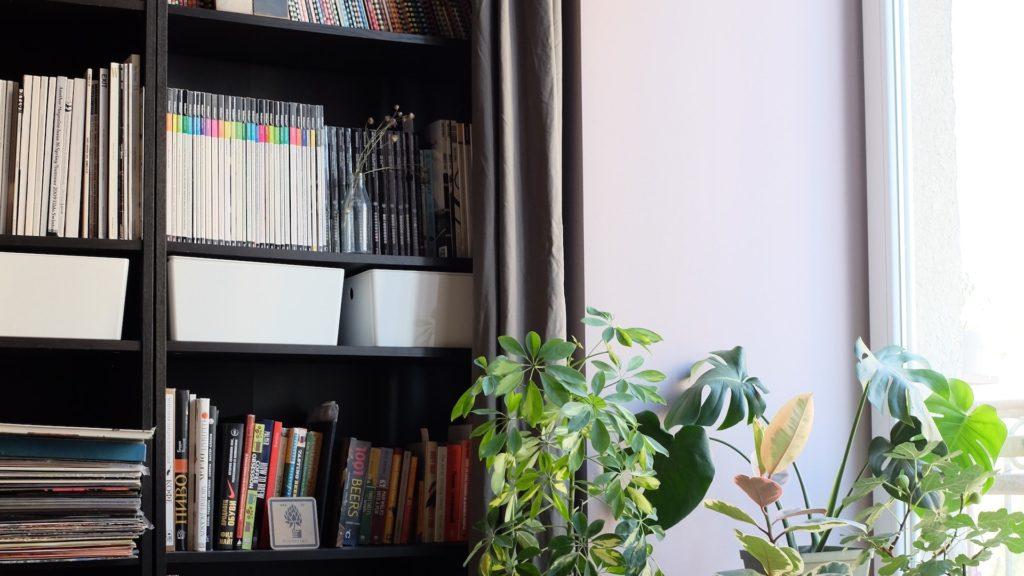本棚と観葉植物のある部屋の無料バーチャル背景素材