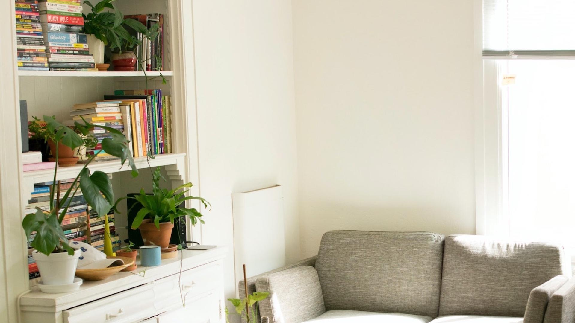 本棚と観葉植物とソファーのある部屋の無料バーチャル背景素材