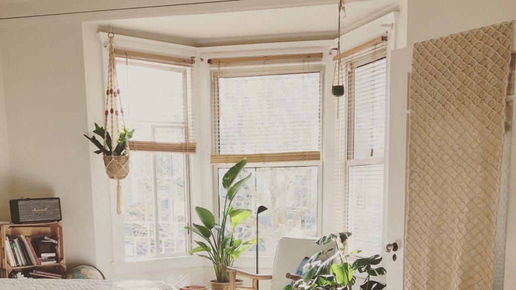 大きな窓とたくさんの観葉植物のある部屋の無料バーチャル背景素材