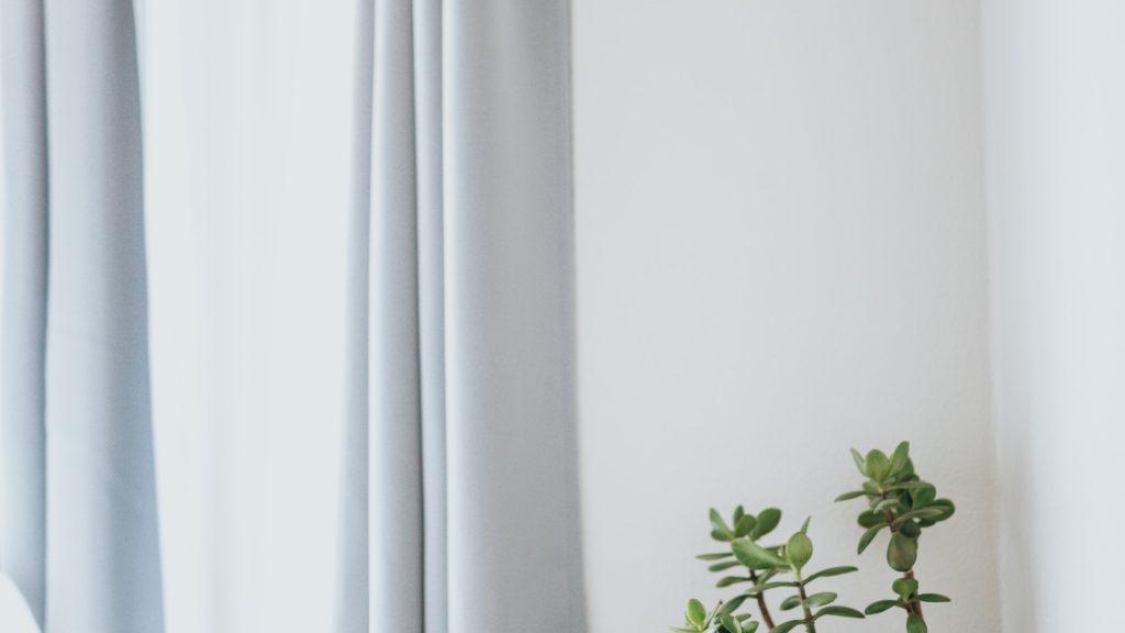グレーのカーテンのかかる窓と観葉植物の無料バーチャル背景素材