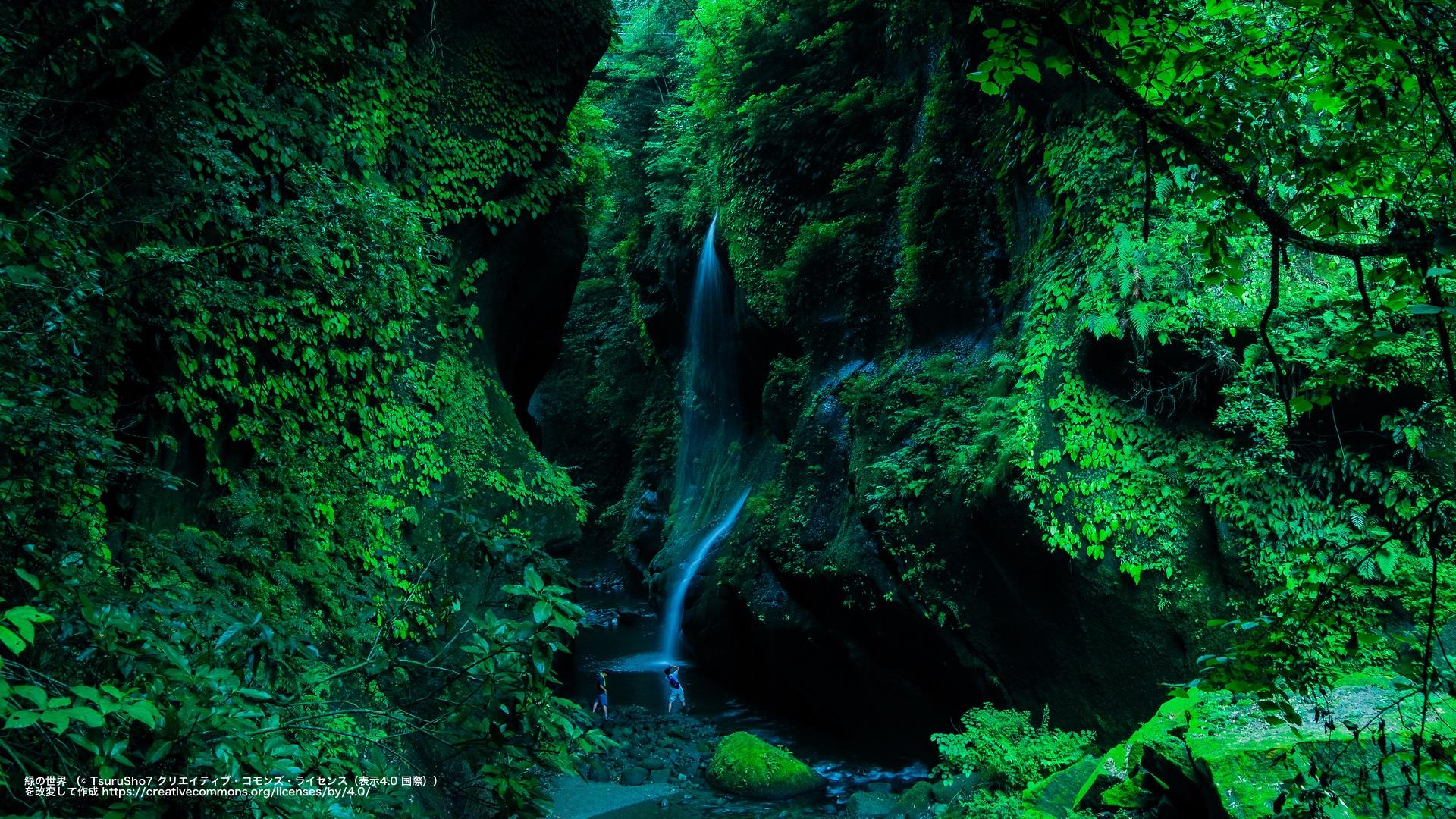 緑の世界 (大分県)