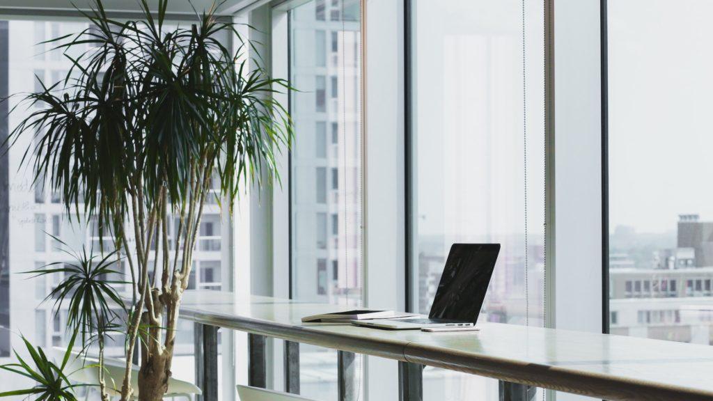 大きな窓と観葉植物のあるオフィス