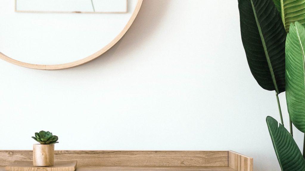 観葉植物と鏡のある白い壁