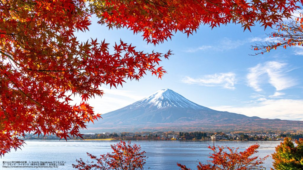 富士山と河口湖畔の紅葉 (山梨県)