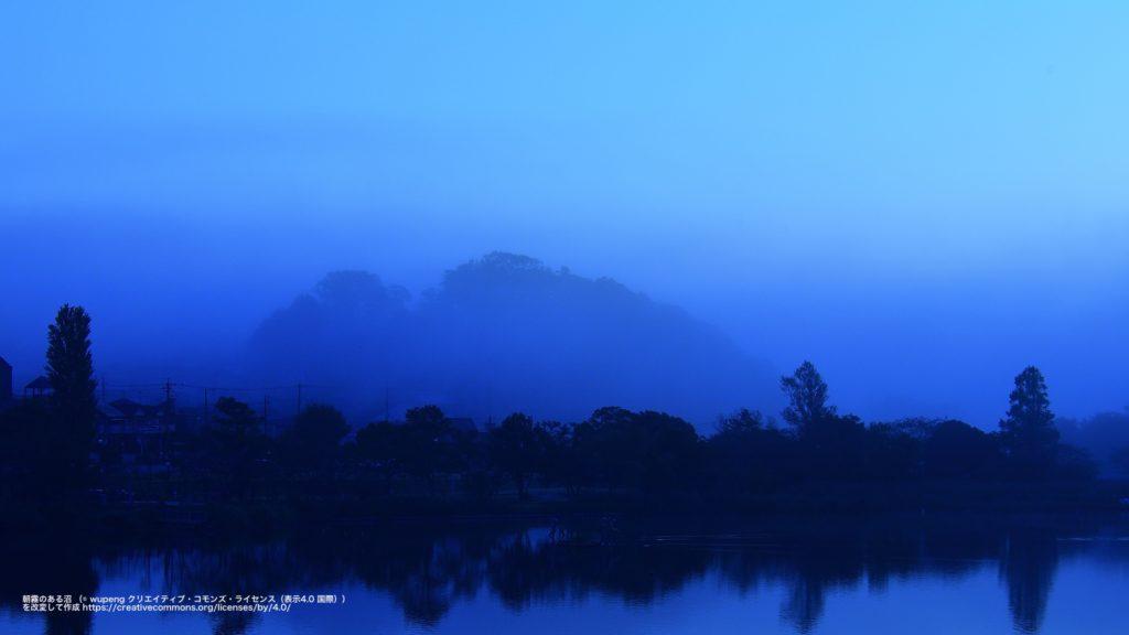 朝霧のある沼 (千葉県)