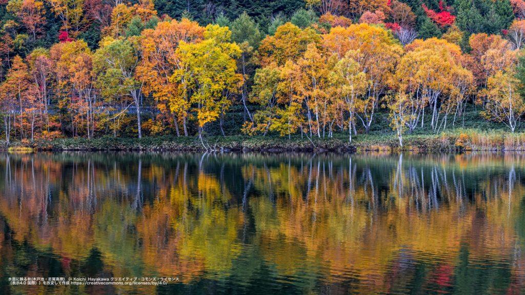 水面に映る秋-木戸池・志賀高原(長野県)