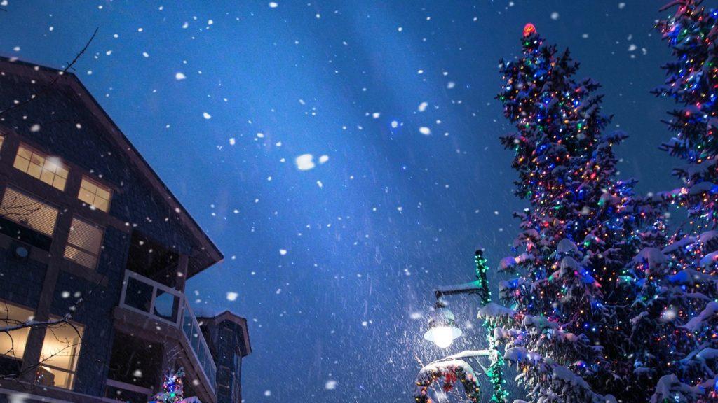 大きなクリスマスツリーのある夜の街