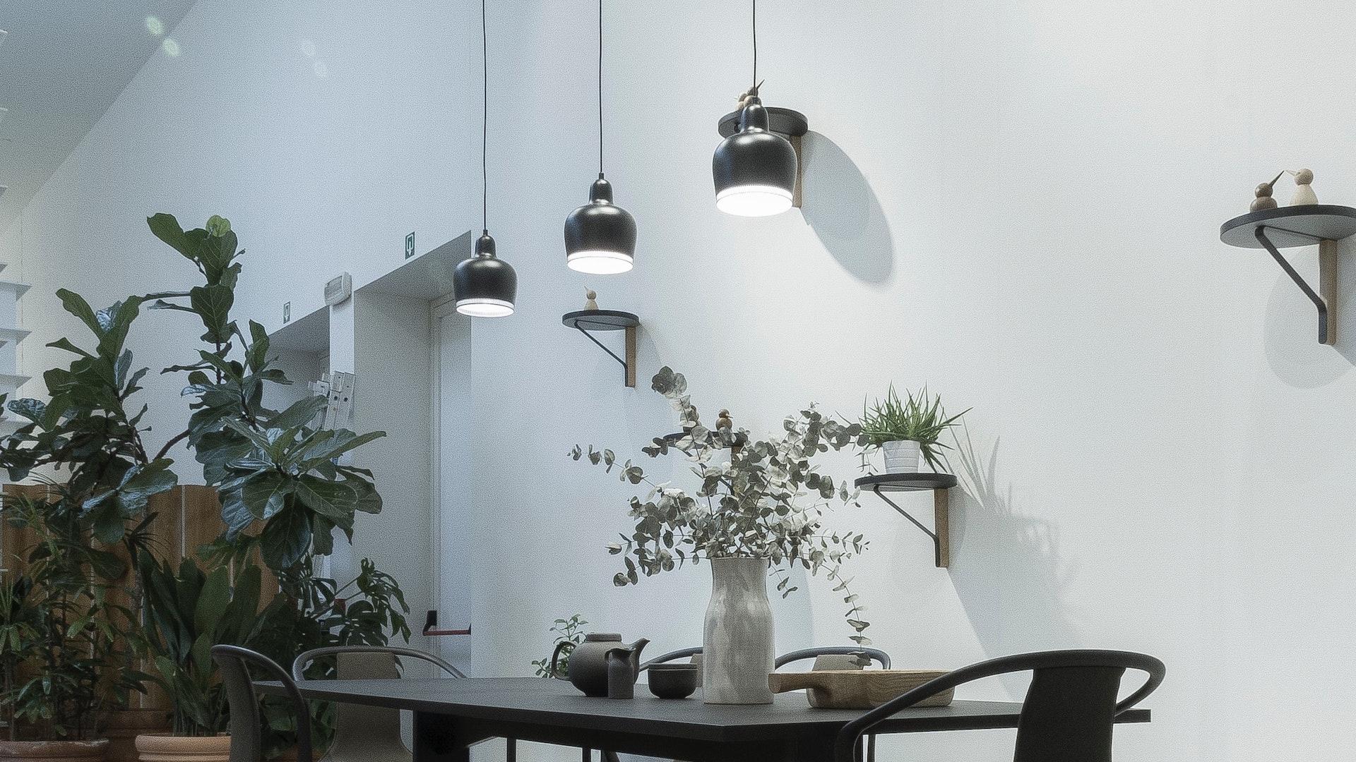 黒いテーブルとたくさんの観葉植物のある部屋