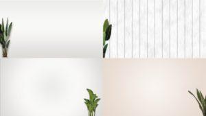 観葉植物のあるシンプル背景50の1
