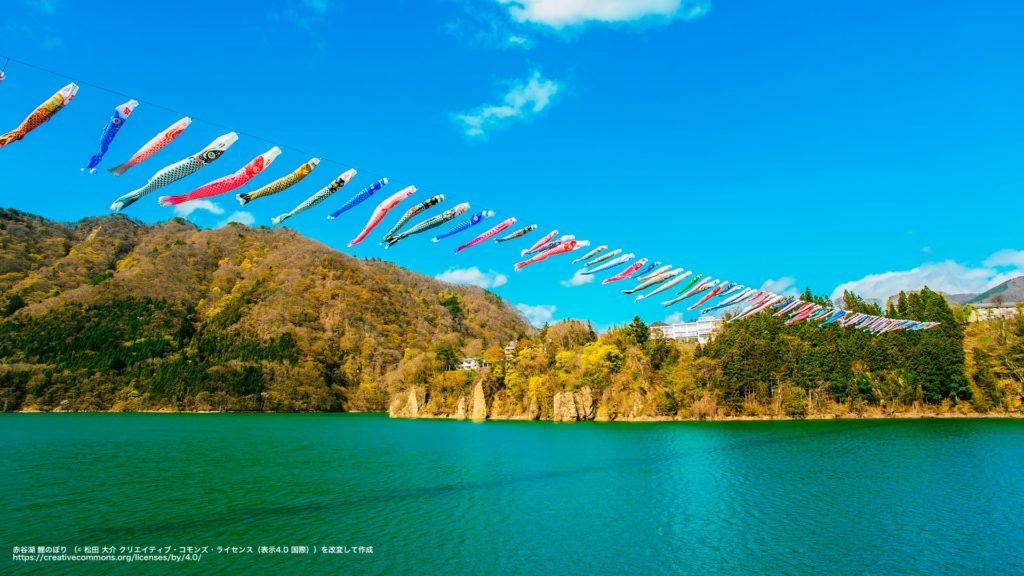 赤谷湖 鯉のぼり (群馬県)