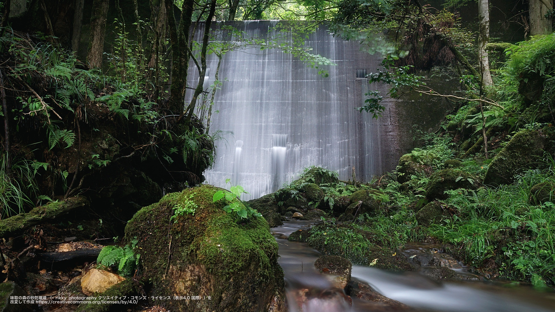 味取の森の砂防堰堤 (兵庫県)